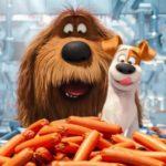 Лето 2016-ого года стало рекордным для кинопроката РФ иСНГ