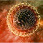 Hepcinat, Daclahep и другие дженерики – с ними реально победить гепатит С