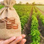 Як взяти сільськогосподарський кредит в банку? – відео, відгуки, поради